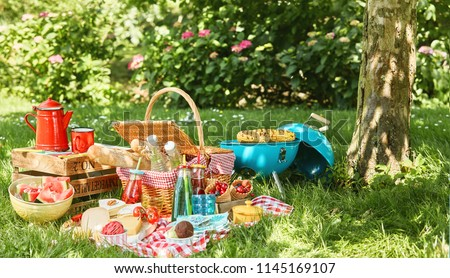Small light blue grill and tree trunk next to picnic blanket with bushes in background while sun illuminates grass Stockfoto ©