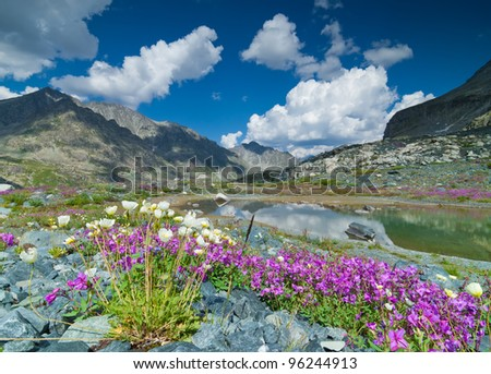 Small mountain lake with blooming flowers on foreground
