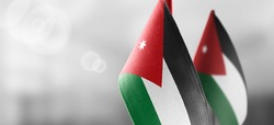 Small national flags of the Jordan on a light blurry background