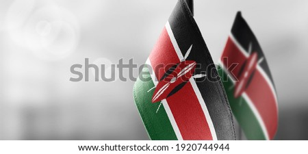 Small national flags of the Kenya on a light blurry background ストックフォト ©
