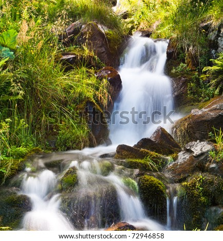 Small natural spring waterfall surrounded by moss and grass