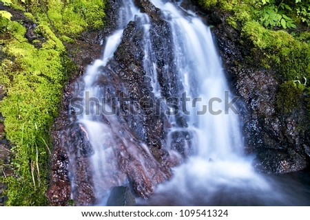 Small Olympic Waterfall - Waterfalls Photography Collection. Olympic National Park, Washington, U.S.A.