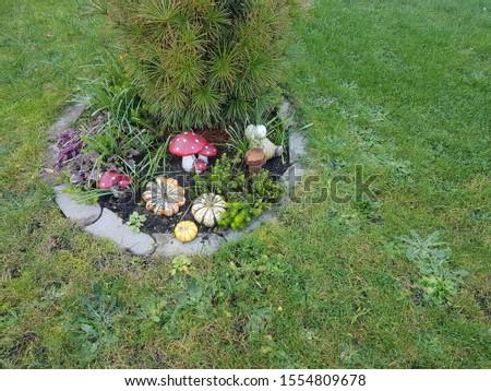 Small ornaments in the garden #1554809678