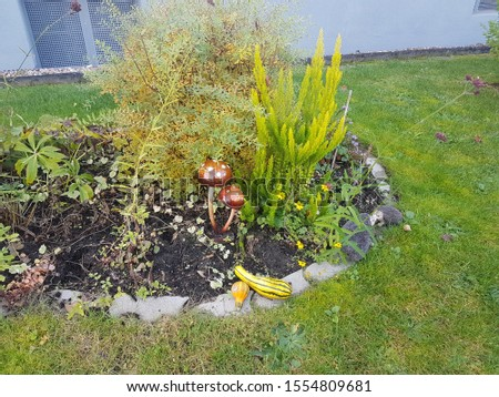 Small ornaments in the garden #1554809681