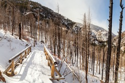 Small panorama of a wooden foot bridge on a mountainside near Estes Park. This snow covered timber bridge is on a hiking trail to Cub Lake through a section burned by the Fern Lake Wildfire in 2012.