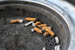 Small pile of cigarette fag butts, laying on top of a public litter bin. The bin has an ash tray design for this purpose. Ash and dirt sit in it. Isolated on their own. Copy space to add text. Macro.