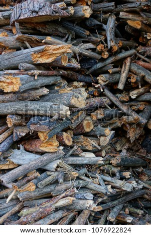 Small pine gray firewood in a pile on the street #1076922824