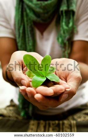Small plant on a women's hand. Save the planet.