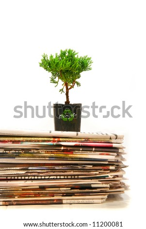 Small plant on top of a pile of newspapers