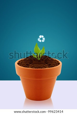 Small plant with recycle sign in garden pot, Ecological awareness concept