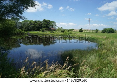 Small pond in a rural area.  The pond is surrounded by trees and grass.  There is also a rustic gazebo or pavilion near the pond.