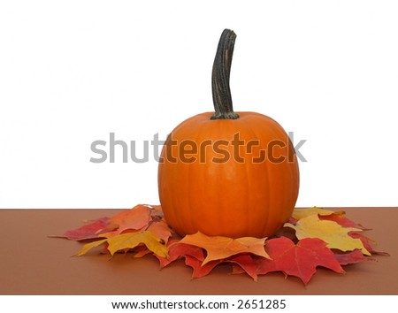 small pumpkin sitting on colorful fall leaves - stock photo