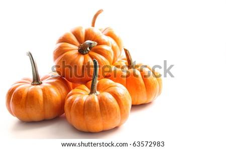 Small pumpkins on white on white