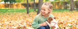 Small purebred dog with little caucasian girl playing in the autumn park.