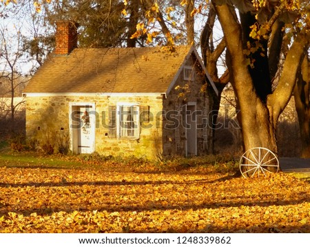 Small quaint rural cottage surrounded by trees and white wooden cart wheel during fall season