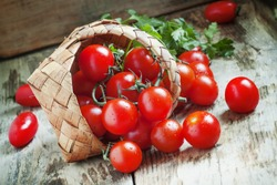 Small red cherry tomatoes spill out of a wicker basket on an old wooden table in rustic style, selective focus