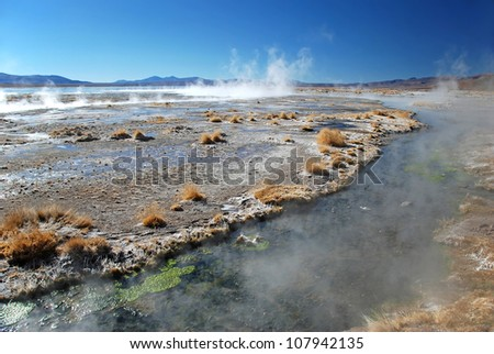 small river and hot springs in the bolivian chilean desert