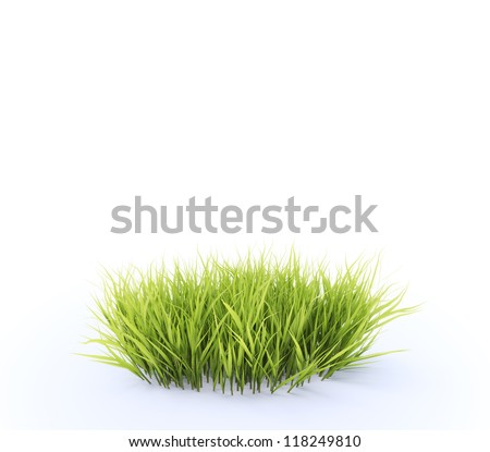 Small, round patch of fresh grass