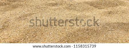 Small sea pebbles background, gravel. Stones pebble background texture. #1158315739