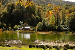 small shack and colorful autumn trees by the lake in autumn