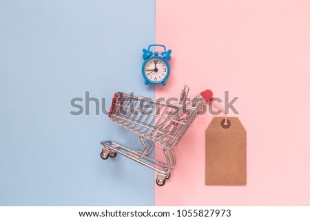 Small shopping cart with blank price tag and alarm clock on pastel background minimal creative concept #1055827973