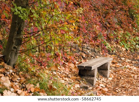 Small  simple log bench with fallen leaves in a park in the autumn.
