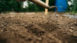 Small spade for hoeing plants in the garden a lot of land on the bed with soil in the garden