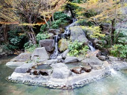 Small stepped waterfall and pool among flowering trees in oriental garden in Tokyo, Japan.