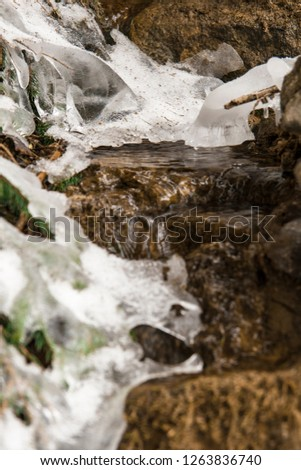 Small stream with the ice. The water flows in the streambed through icy places in the forest. Fir branches are covered with ice in the streambed.