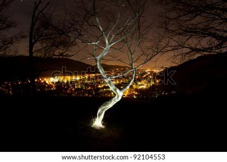 small tree light painting over freiburg - stock photo