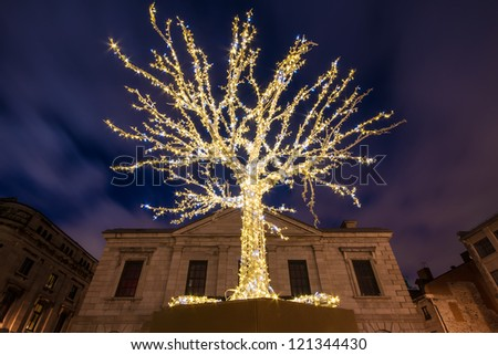 Small Tree surrounded by a decorative light for Christmas, and in the background the buildings of Old Montreal