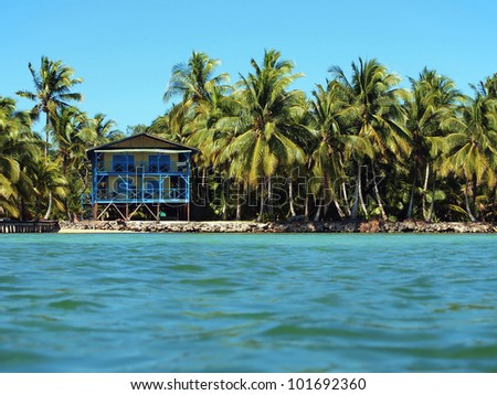 Small tropical hotel on a Caribbean island with lush coconut trees, Panama, Bocas del Toro