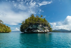 Small tropical island, and seascape, weathered by sea water, covered with lush vegetation, Gam Island, Raja Ampat, West Papua, Indonesia