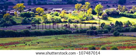 Small village before sunrise in Yunnan,China