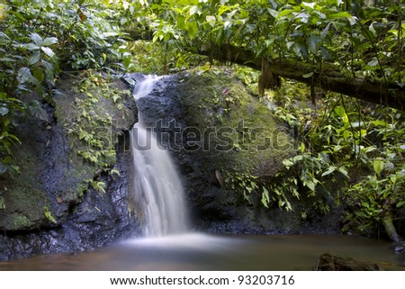 Small waterfall and stream in tropical rainforest in the Ecuadorian Amazon
