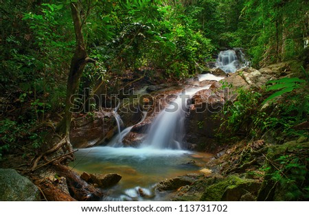 Small waterfall in deep jungle forest. Creek stream and green plants environment