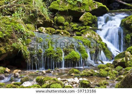 Small Waterfall in forrest with moos on rocks - stock photo