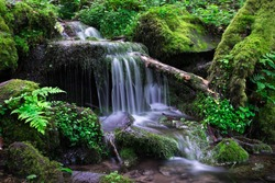 Small waterfall in the forest after the rain - Schächerbachtour Homberg Ohm Vogelsberg Germany
