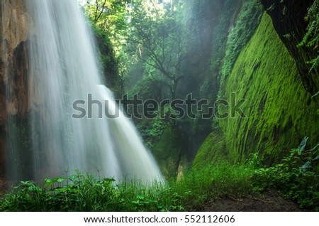 Small waterfall in the forest - Bali, Indonesia #552112606