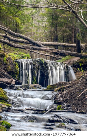 Small waterfall on the forest river at Kazu grava, Latvia Foto stock ©