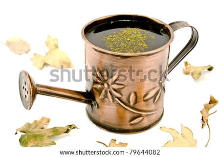Small Watering can with dry leafs