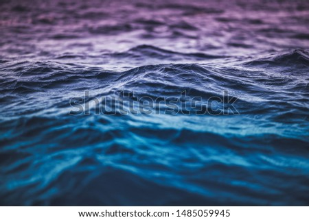 Small waves in the water. #1485059945