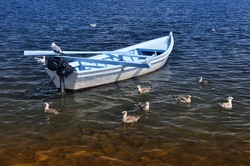 small white fishing boat surrounded by several sea-gulls