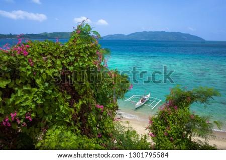 Small White Fishing Boat Through Pink Flower Bushes near Bon Bon Beach, Romblon Island, The Philippines