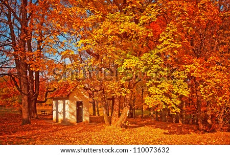 Small white house in the forest in autumn