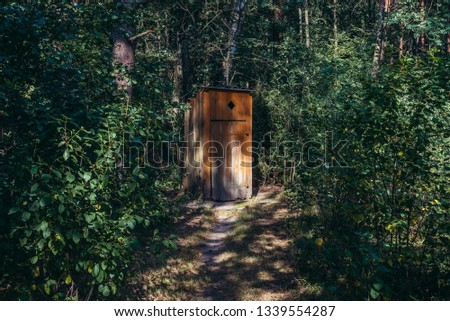 Small wooden prive hidden among tress in forest in Podlasie region of Poland
