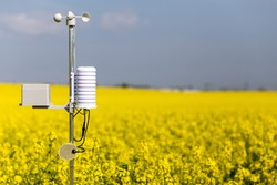 Smart agriculture and smart farm technology concept. Weatherstation with anemometer, a meteorological instrument used to measure the wind speed and thermometer, measuring of rainfalll and leaf wetness