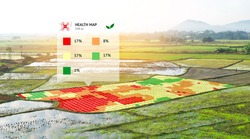 Smart agriculture , farm , precision farming concept. NIR images application screen used to create field health maps using the normalize difference vegetation percent index in field rice.