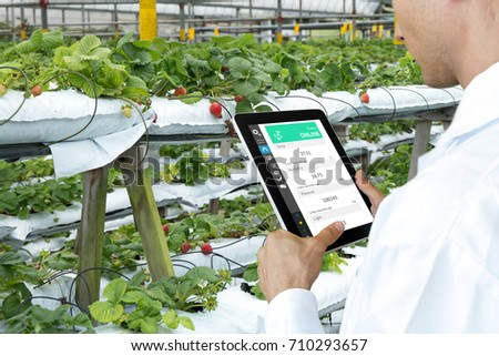 Smart agriculture, farm , sensor technology concept. Farmer hand using tablet for monitoring temperature , humidity , pressure , light of soil in strawberry farm.