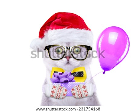 Smart and beautiful cat in a Christmas costume holding a present. Gift Box. New Year\'s holidays